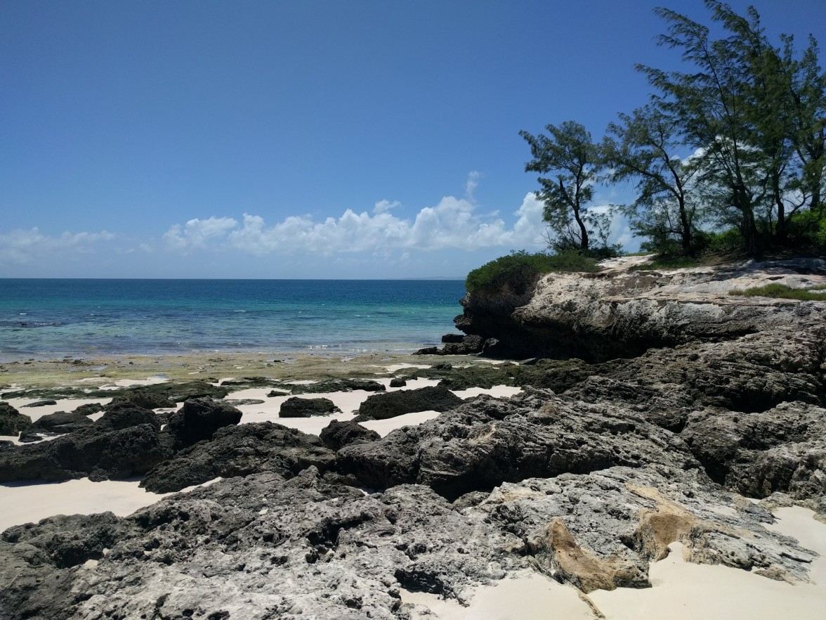 the beach on santa carolina island